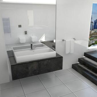 """""""Structum"""" organizuotas inovatyvios vonios konkursas. Laimėta 1-a vieta."""