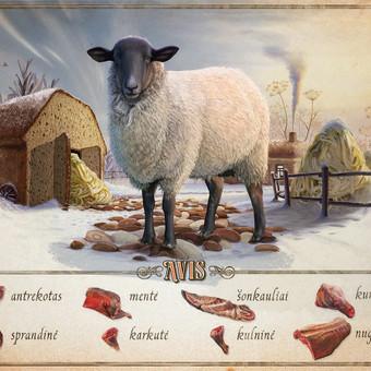 """""""Avis"""" iliustracija mėsos turgui."""