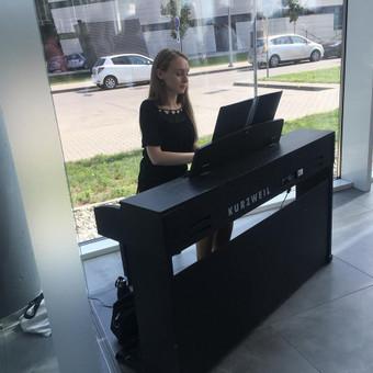 Pianistė Justė Kazakevičiūtė / Justė Kazakevičiūtė / Darbų pavyzdys ID 502449