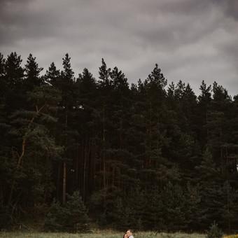 Vestuvių fotografija | / Dovilė Bajoriūnienė / Darbų pavyzdys ID 504581