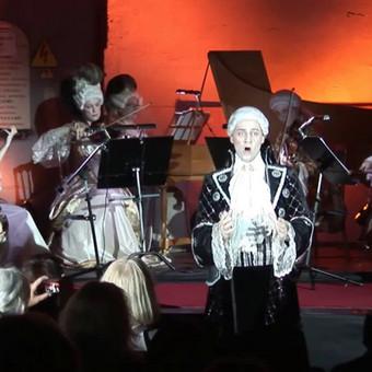 Vokalo (solinio dainavimo) pamokos / Algirdas Bagdonavičius / Darbų pavyzdys ID 507207