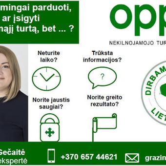 Nekilnojamojo turto brokerė Gražina / Gražina Gečaitė / Darbų pavyzdys ID 512479