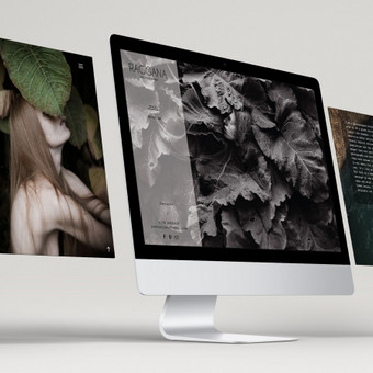 RAGGANA photography internetinė svetainė - katalogas