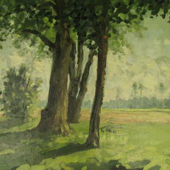 Meistriška tapyba , piešiniai / Rūta Kučinskaitė / Darbų pavyzdys ID 548987
