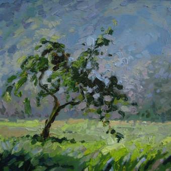 Meistriška tapyba , piešiniai / Rūta Kučinskaitė / Darbų pavyzdys ID 549009