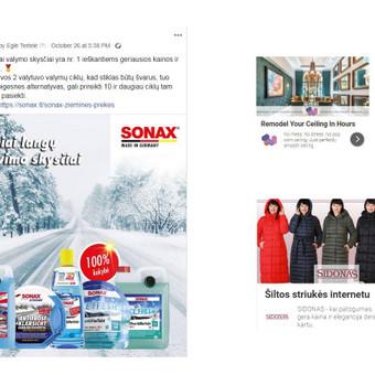 Efektyvi reklama internete / Reklama internete / Eglė Tertelė / Darbų pavyzdys ID 549871
