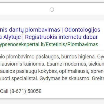 Efektyvi reklama internete / Reklama internete / Eglė Tertelė / Darbų pavyzdys ID 550019