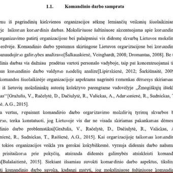 Parengta analizė // Komandinio darbo organizacijose teoriniai aspektai(1)
