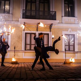 Ugnies Teatro šou / Ugnies teatras / Darbų pavyzdys ID 561329