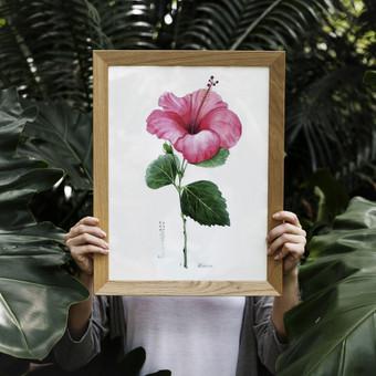 Dailininkas iliustratorius / Dovydas / Darbų pavyzdys ID 569223