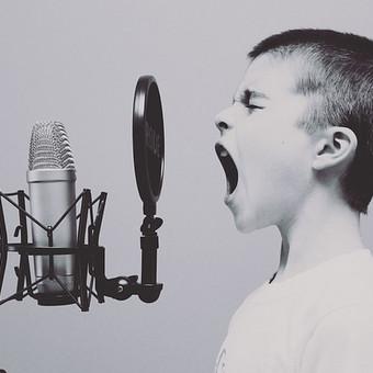 Įrašome vokalą ir apdirbame pagal radijų keliamus garsumo reikalavimus.