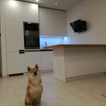 Virtuvės baldai / Žilvinas Baldai / Darbų pavyzdys ID 576831