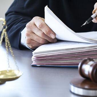 Advokatė Agnija Frejerė / Agnija Frejerė / Darbų pavyzdys ID 604435