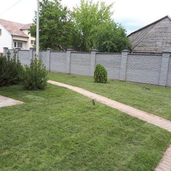 Vejos įrengimas, ruloninė veja, apželdinimas, laistymas / Aplinkos.lt / Darbų pavyzdys ID 608349