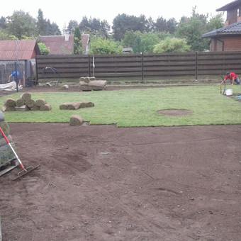 Vejos įrengimas, ruloninė veja, apželdinimas, laistymas / Aplinkos.lt / Darbų pavyzdys ID 608357