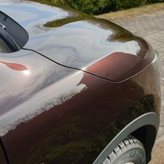 Automobilių poliravimas / Šarūnas Petkelis / Darbų pavyzdys ID 618015