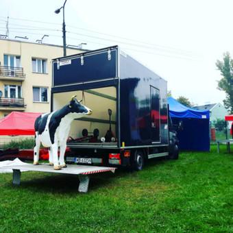 vezam24.lt - kraustymo ir krovinių gabenimo paslaugas, atliekame visoje Lietuvoje ir ne tik. Atliekame nuo durų iki durų. Klientui pageidaujant galime dirbti naktį. Atliekame pakavimo paslaugos.