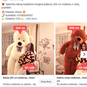 Facebook Reklama: Kūrimas + Optimizavimas / Mantas / Darbų pavyzdys ID 633831