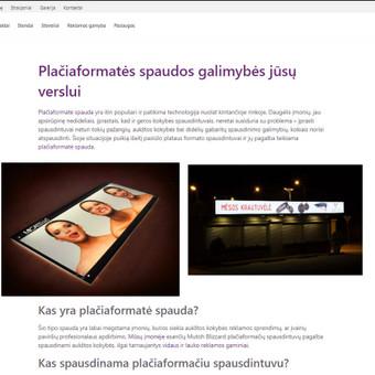 Efektyvus socialinių tinklų marketingas / Austėja Šidlauskaitė / Darbų pavyzdys ID 634473