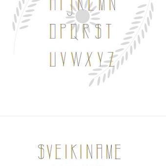 Grafikos dizainerė, fotografė Vilniuje / Beatričė Keniausytė / Darbų pavyzdys ID 636689