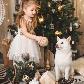 Tobula Jūsų fotografija / Grazina Lomovskaja / Darbų pavyzdys ID 637217