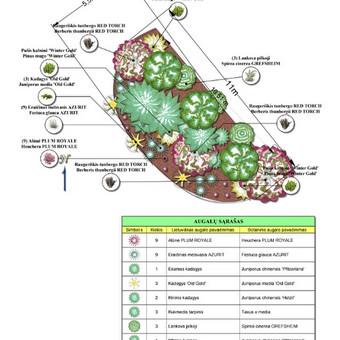 Aplinkos projektai, apželdinimas ir želdinių priežiūra / MB Želdynų projektai / Darbų pavyzdys ID 650077