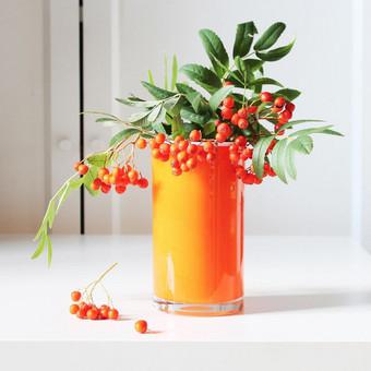 Prekių, maisto produktų stilisto ir fotografo paslaugos / Salvita Bingelytė / Darbų pavyzdys ID 657761