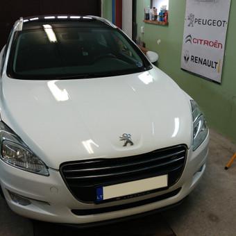 Peugeot Renault Citroen diagnostika, elektronikos remontas / Laimonas / Darbų pavyzdys ID 658847