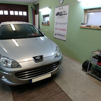 Peugeot Renault Citroen diagnostika, elektronikos remontas / Laimonas / Darbų pavyzdys ID 658851