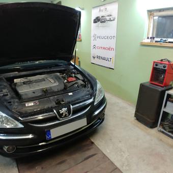 Peugeot Renault Citroen diagnostika, elektronikos remontas / Laimonas / Darbų pavyzdys ID 658859