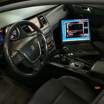Peugeot Renault Citroen diagnostika, elektronikos remontas / Laimonas / Darbų pavyzdys ID 659137