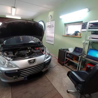 Peugeot Renault Citroen diagnostika, elektronikos remontas / Laimonas / Darbų pavyzdys ID 659155
