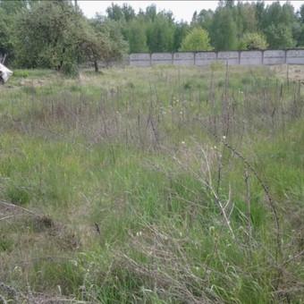 Žolės pjovimo paslaugos. / Zigmas T / Darbų pavyzdys ID 660017