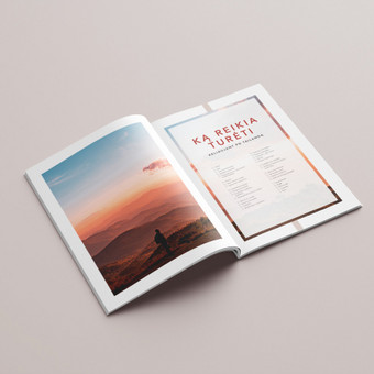 Profesionalios grafikos dizainerio paslaugos (print | web) / Aurelija Sukackė / Darbų pavyzdys ID 661805