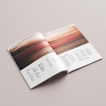 Profesionalios grafikos dizainerio paslaugos (print | web) / Aurelija Sukackė / Darbų pavyzdys ID 661807