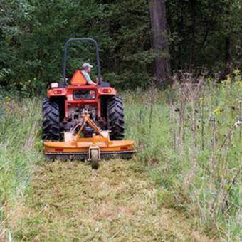 Žolės Pjovimas. Pastovi priežiūra. Vienkartiniai sutvarkymai / Toras / Darbų pavyzdys ID 662579