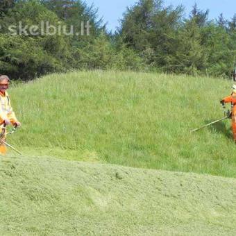 Žolės Pjovimas. Pastovi priežiūra. Vienkartiniai sutvarkymai / Toras / Darbų pavyzdys ID 662595