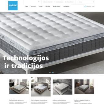 Interneto svetainių ir el.parduotuvių kūrimas, TVS, SEO / UAB TVS projektai / Darbų pavyzdys ID 670075