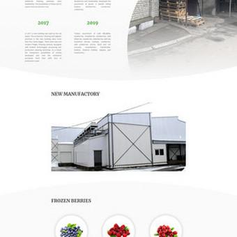 Įmonės prekiaujančios šviežiais bei šaldytais miško grybais ir uogomis internetinė svetainė www.melbera.lt.