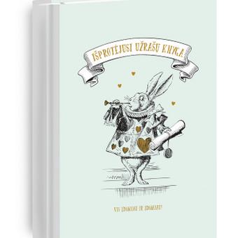 Grafikos dizainerė-iliustratorė / Eglė Petkevičiūtė / Darbų pavyzdys ID 682101
