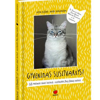 Grafikos dizainerė-iliustratorė / Eglė Petkevičiūtė / Darbų pavyzdys ID 682107
