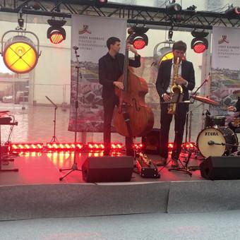 Saksofonistas/Profesionalių muzikantų grupė / Profesionalūs muzikantai / Darbų pavyzdys ID 685795