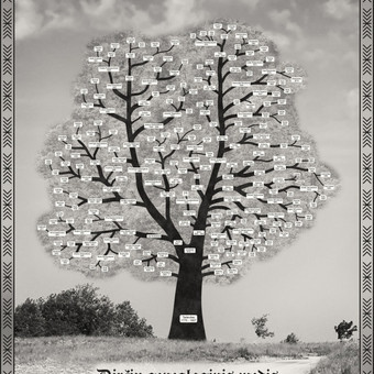 Giminės genealoginio medžio maketas.