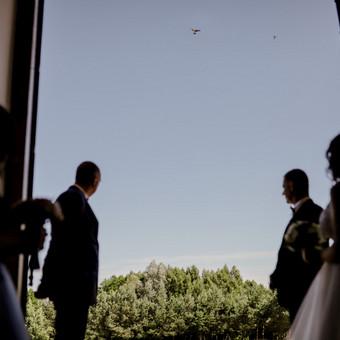 Vestuvių|krikštynų|asmeninė|poros|šeimos fotosesija / Dovilė Balčiūnaitė / Darbų pavyzdys ID 727273