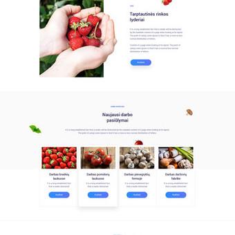 Interneto svetainių kūrimas Vilniuje / Algirdas Baležentis / Darbų pavyzdys ID 734385