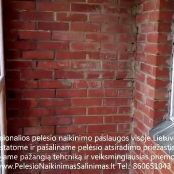 Pelėsio naikinimas- šalinimas iš balkonų. Darbus atliekame visoje Lietuvoje! Tel.: +37060651043