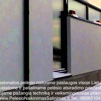 Pelėsio naikinimo šalinimo paslaugos iš privačių namų Vilniuje.Darbus atliekame visoje Lietuvoje! Tel.: +37060651043