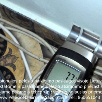 Priežasčių nustatimas kaip tinkamai pašalinti pelėsio atsiradima. Darbus atliekame visoje Lietuvoje! Tel.: +37060651043