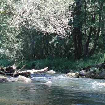 JAROS upės slenkstis