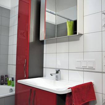 #Vonios kambario interjeras. Dažytas mdf - raudonas.